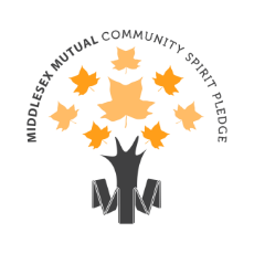 community spirit pledge logo